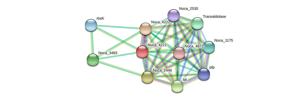 Noca_4221 protein (Nocardioides sp. JS614) - STRING interaction network