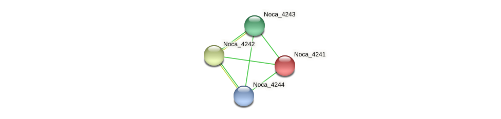 Noca_4241 protein (Nocardioides sp. JS614) - STRING interaction network