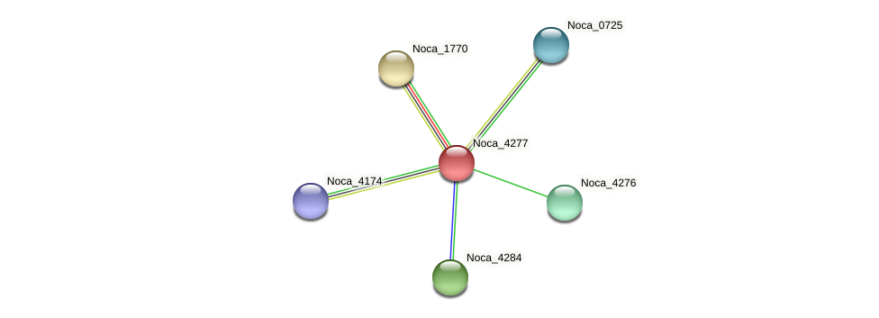 Noca_4277 protein (Nocardioides sp. JS614) - STRING interaction network