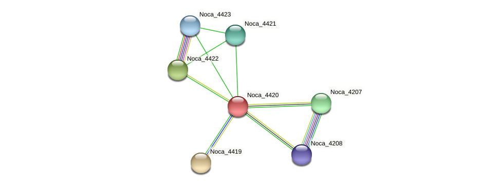 Noca_4420 protein (Nocardioides sp. JS614) - STRING interaction network