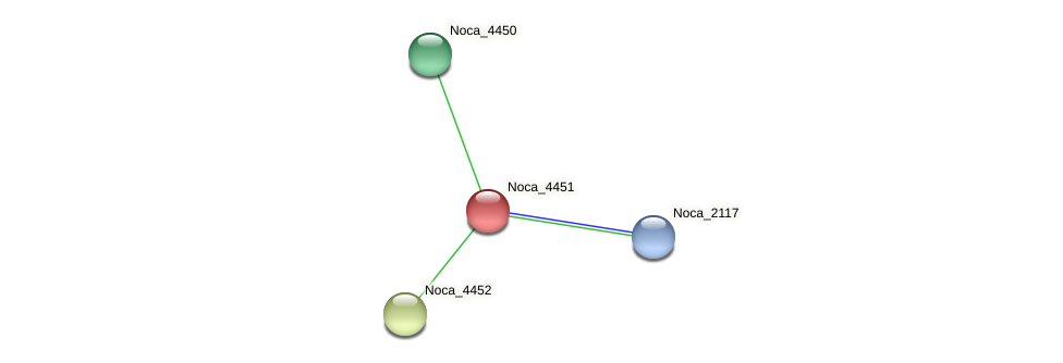 Noca_4451 protein (Nocardioides sp. JS614) - STRING interaction network