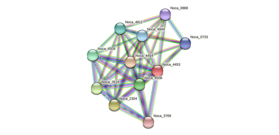 Noca_4453 protein (Nocardioides sp. JS614) - STRING interaction network