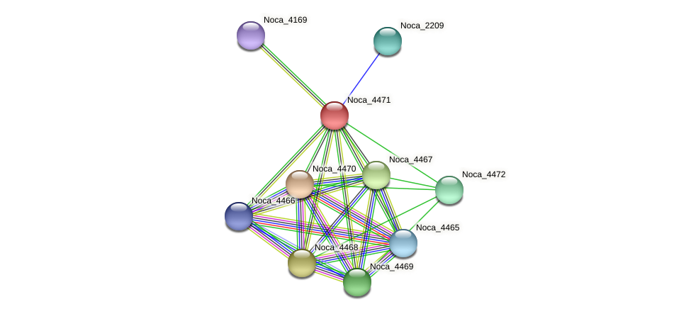 Noca_4471 protein (Nocardioides sp. JS614) - STRING interaction network