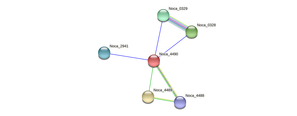 Noca_4490 protein (Nocardioides sp. JS614) - STRING interaction network