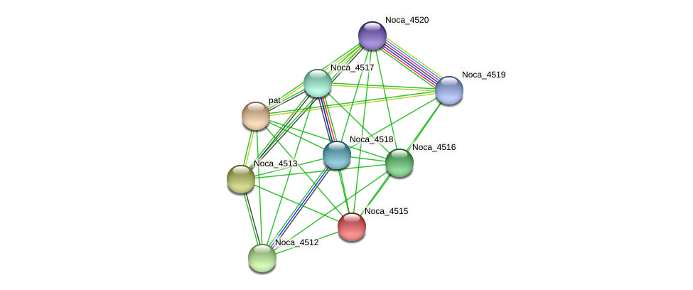 Noca_4515 protein (Nocardioides sp. JS614) - STRING interaction network