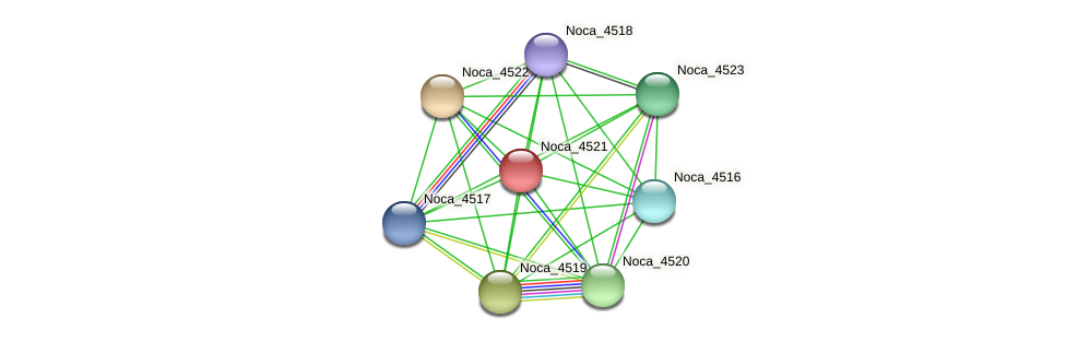 Noca_4521 protein (Nocardioides sp. JS614) - STRING interaction network