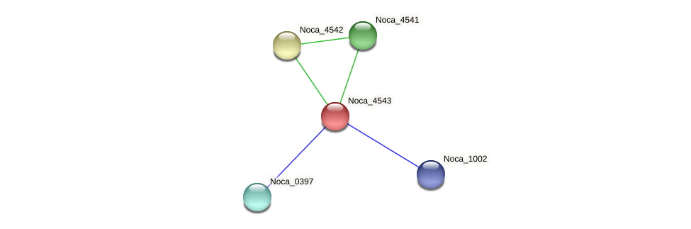 Noca_4543 protein (Nocardioides sp. JS614) - STRING interaction network