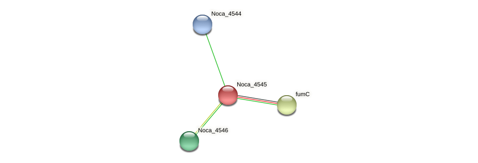 Noca_4545 protein (Nocardioides sp. JS614) - STRING interaction network