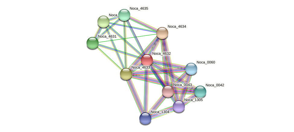 Noca_4632 protein (Nocardioides sp. JS614) - STRING interaction network