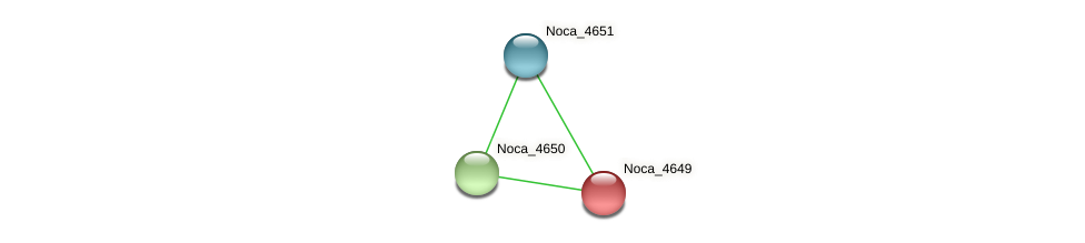 Noca_4649 protein (Nocardioides sp. JS614) - STRING interaction network