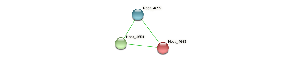 Noca_4653 protein (Nocardioides sp. JS614) - STRING interaction network
