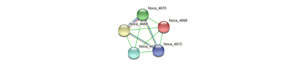 Noca_4668 protein (Nocardioides sp. JS614) - STRING interaction network