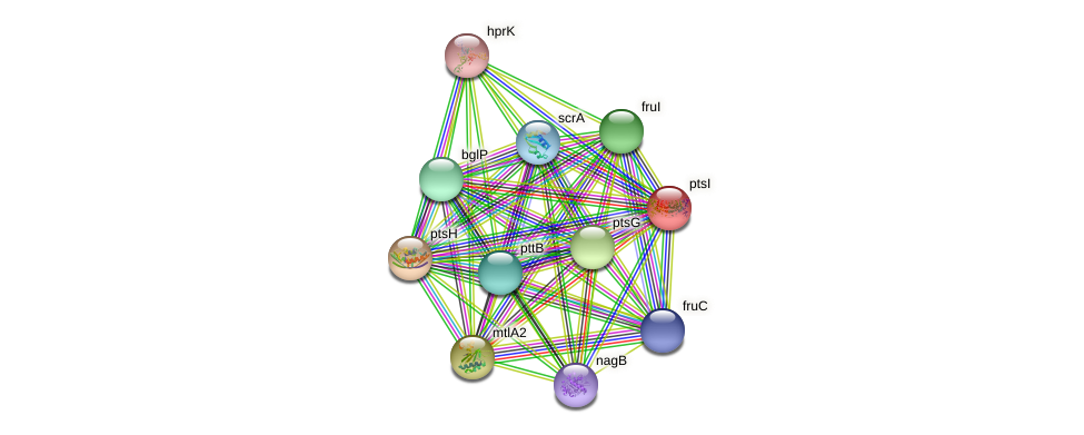 ptsI protein (Streptococcus mutans UA159) - STRING interaction network