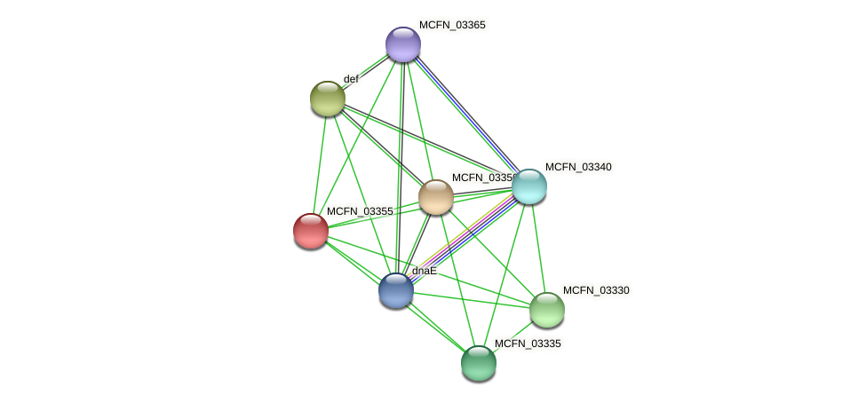 MCFN_03355 protein (Mycoplasma californicum) - STRING interaction network