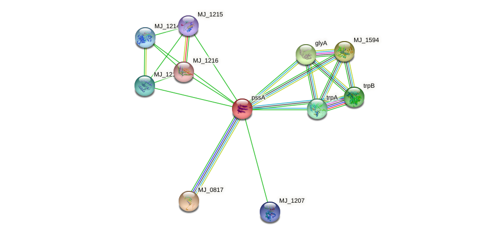 pssA protein (Methanocaldococcus jannaschii) - STRING interaction network
