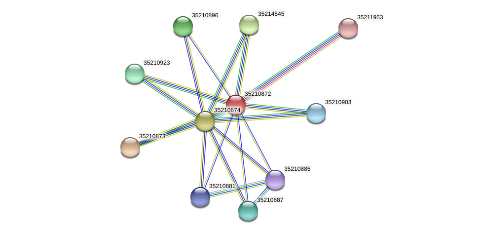 gll0311 protein (Gloeobacter violaceus) - STRING interaction network