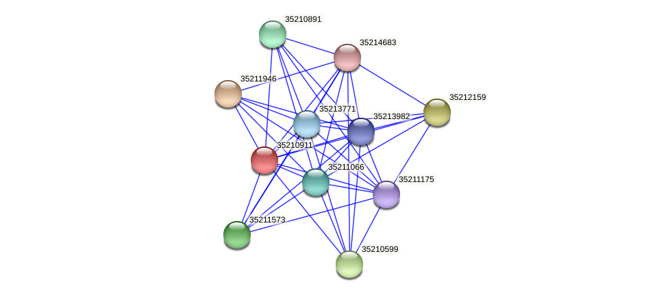 gll0350 protein (Gloeobacter violaceus) - STRING interaction network