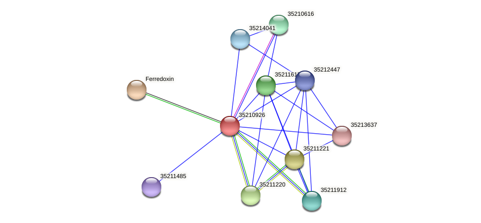 gll0365 protein (Gloeobacter violaceus) - STRING interaction network