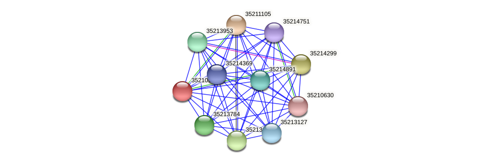 gll0372 protein (Gloeobacter violaceus) - STRING interaction network