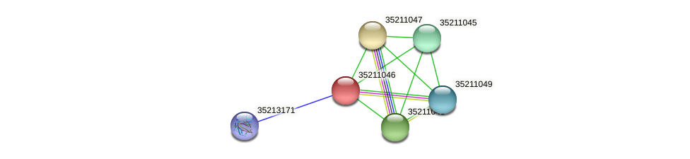 gll0485 protein (Gloeobacter violaceus) - STRING interaction network
