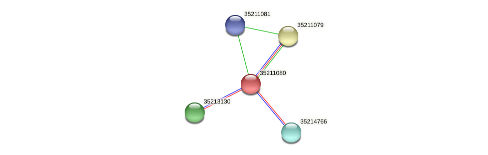gll0519 protein (Gloeobacter violaceus) - STRING interaction network