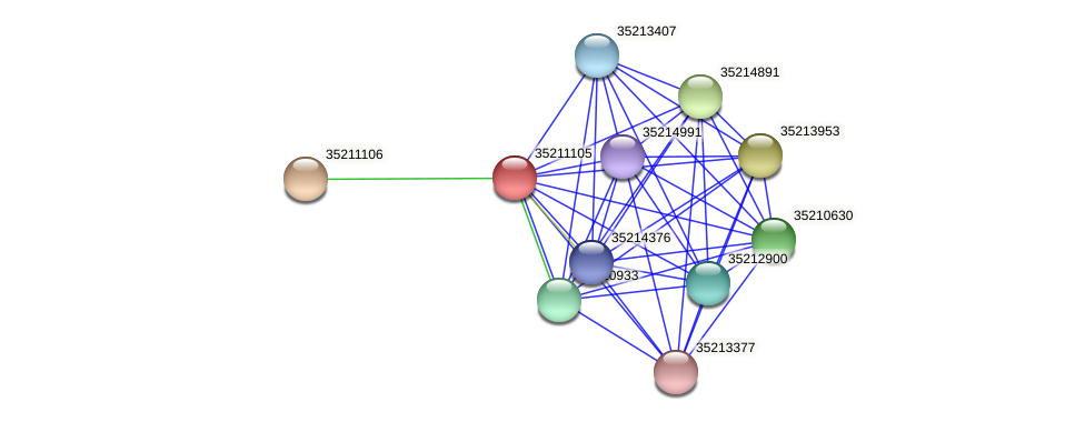 gll0544 protein (Gloeobacter violaceus) - STRING interaction network