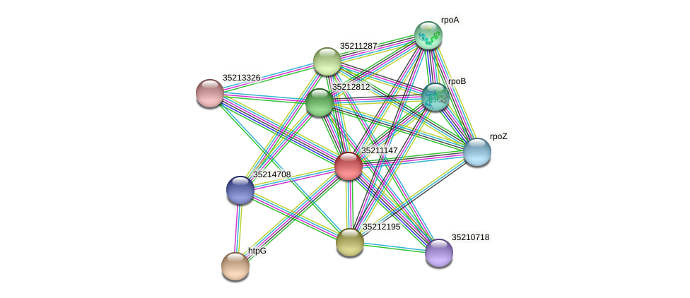 gll0585 protein (Gloeobacter violaceus) - STRING interaction network