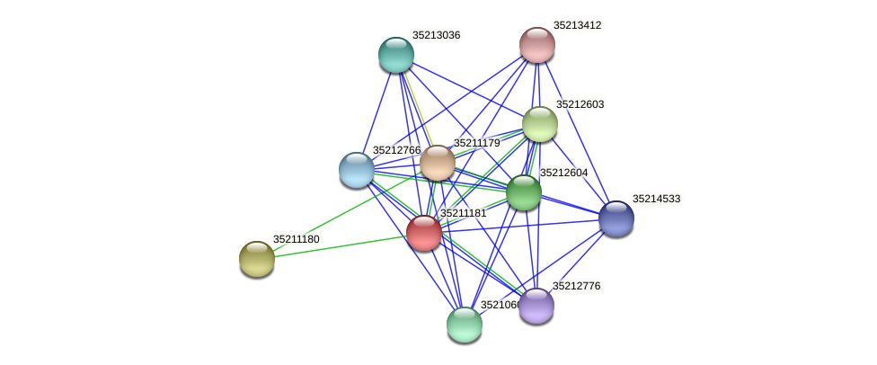 gll0619 protein (Gloeobacter violaceus) - STRING interaction network