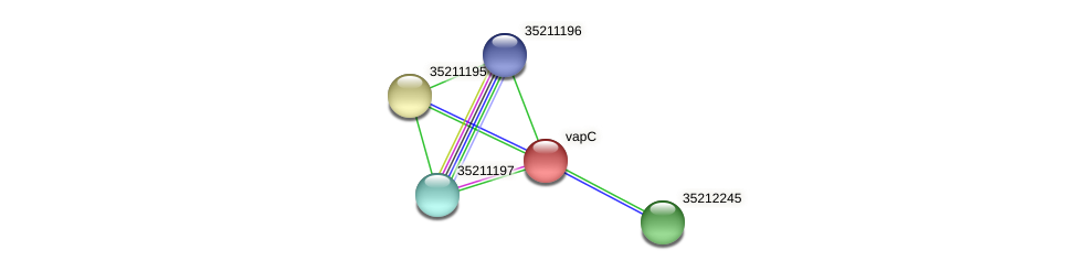 gll0632 protein (Gloeobacter violaceus) - STRING interaction network