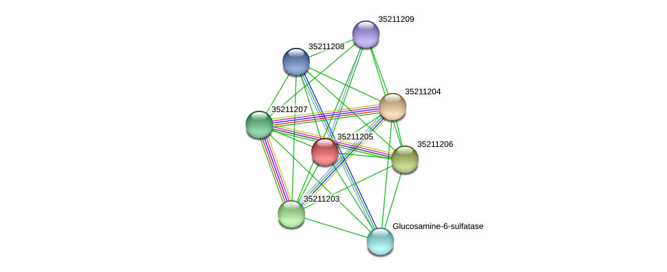 gll0643 protein (Gloeobacter violaceus) - STRING interaction network