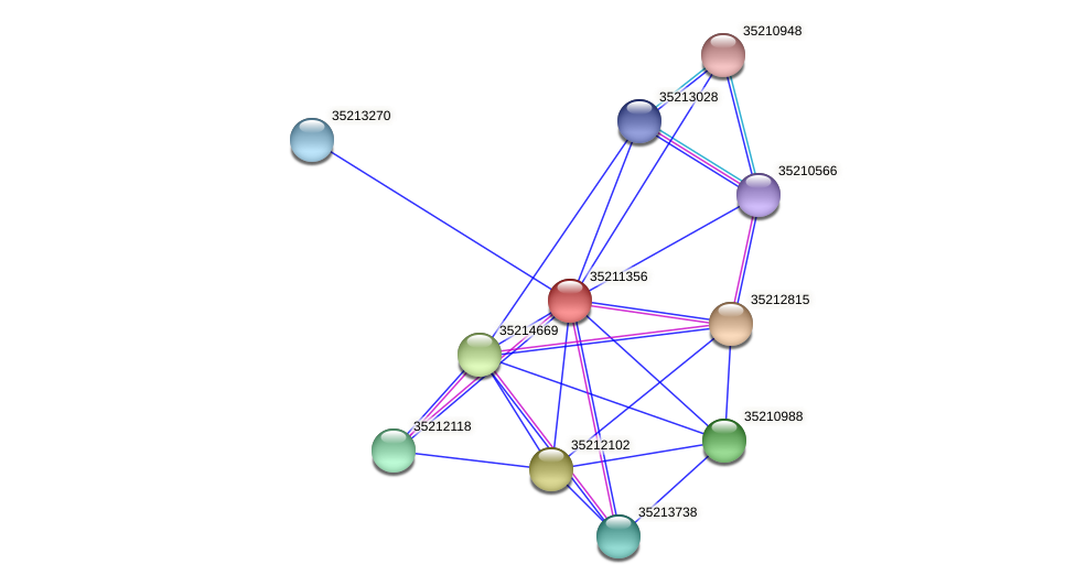 gll0794 protein (Gloeobacter violaceus) - STRING interaction network