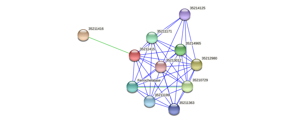gll0852 protein (Gloeobacter violaceus) - STRING interaction network