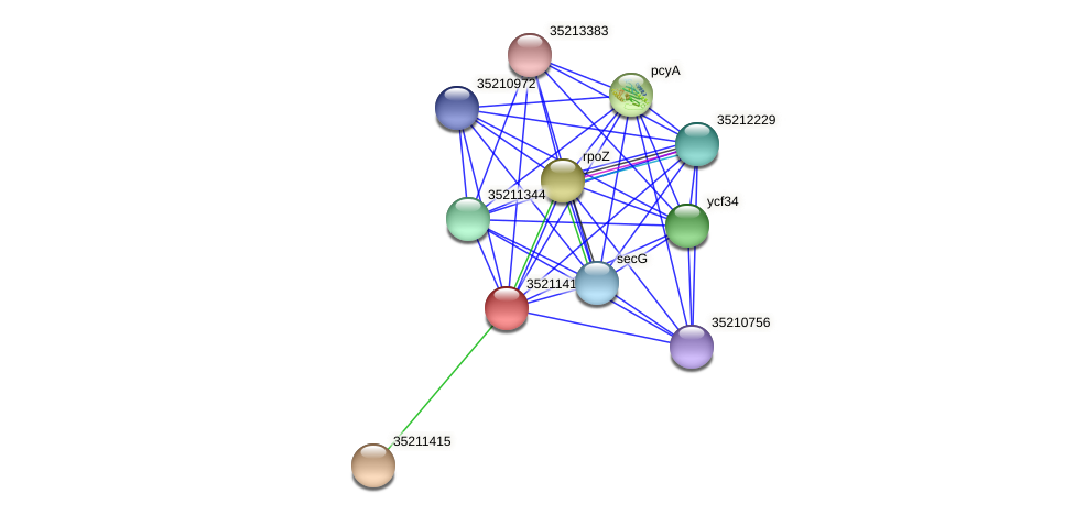 gll0853 protein (Gloeobacter violaceus) - STRING interaction network