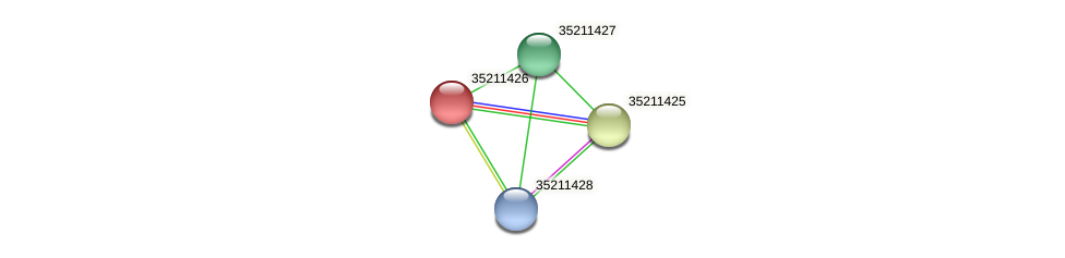 gll0863 protein (Gloeobacter violaceus) - STRING interaction network