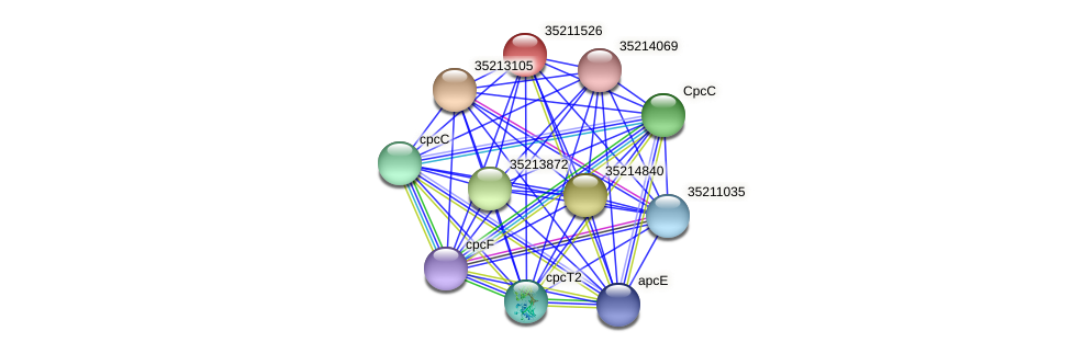 gll0963 protein (Gloeobacter violaceus) - STRING interaction network