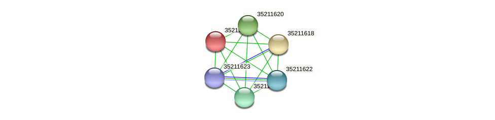 gll1056 protein (Gloeobacter violaceus) - STRING interaction network