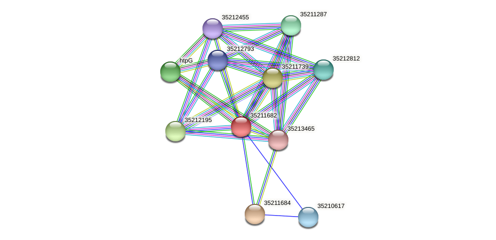 gll1119 protein (Gloeobacter violaceus) - STRING interaction network