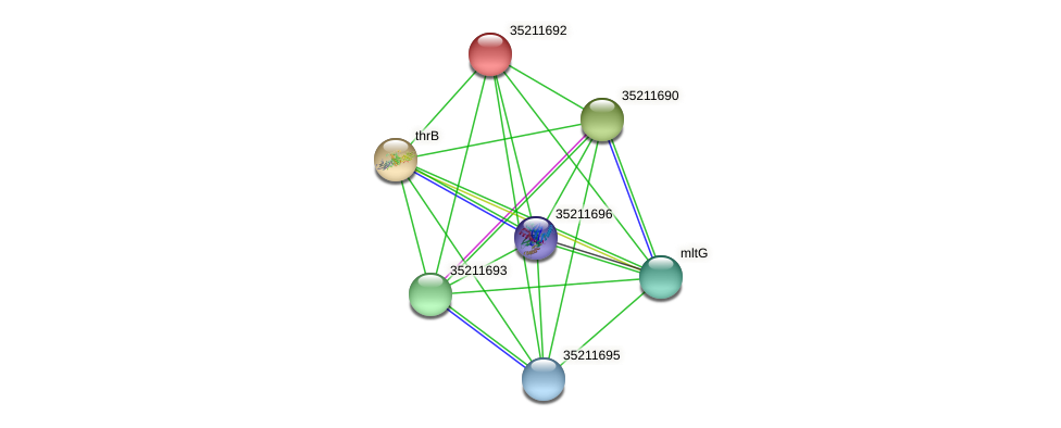 gll1128 protein (Gloeobacter violaceus) - STRING interaction network