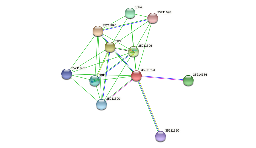 gll1129 protein (Gloeobacter violaceus) - STRING interaction network
