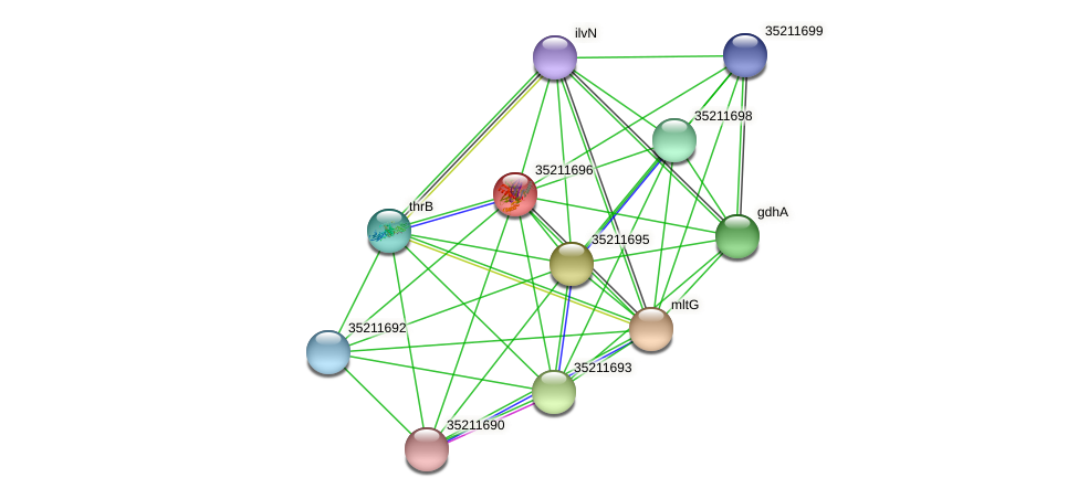 gll1132 protein (Gloeobacter violaceus) - STRING interaction network