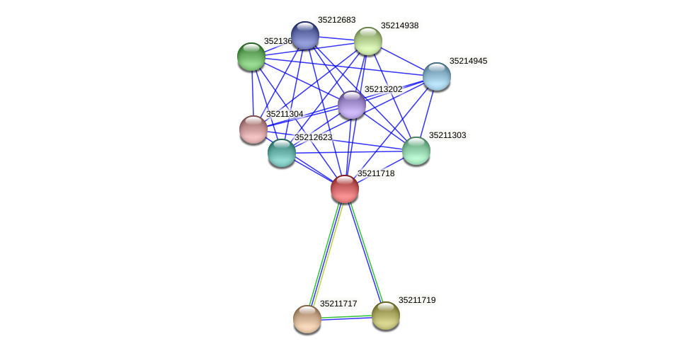 gll1154 protein (Gloeobacter violaceus) - STRING interaction network