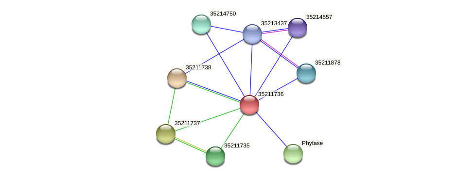 gll1172 protein (Gloeobacter violaceus) - STRING interaction network