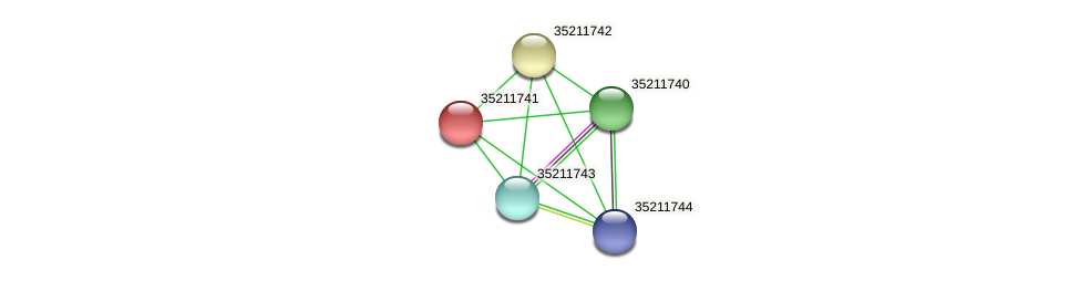 gll1177 protein (Gloeobacter violaceus) - STRING interaction network