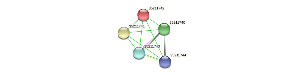 gll1178 protein (Gloeobacter violaceus) - STRING interaction network