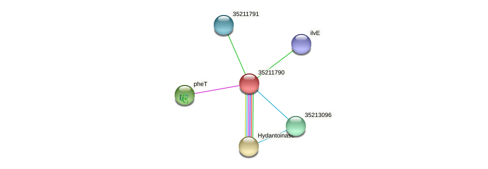 gll1226 protein (Gloeobacter violaceus) - STRING interaction network