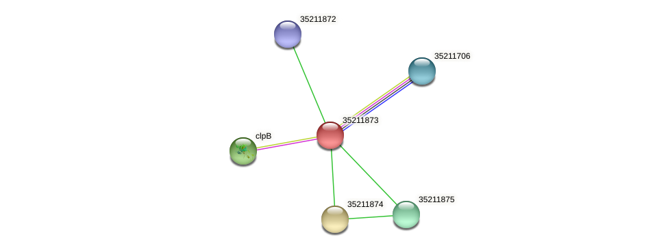 gll1309 protein (Gloeobacter violaceus) - STRING interaction network