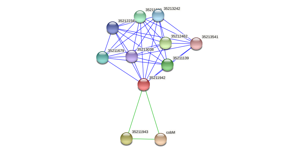 gll1378 protein (Gloeobacter violaceus) - STRING interaction network