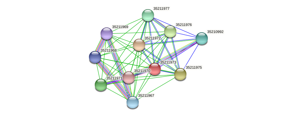 gll1408 protein (Gloeobacter violaceus) - STRING interaction network