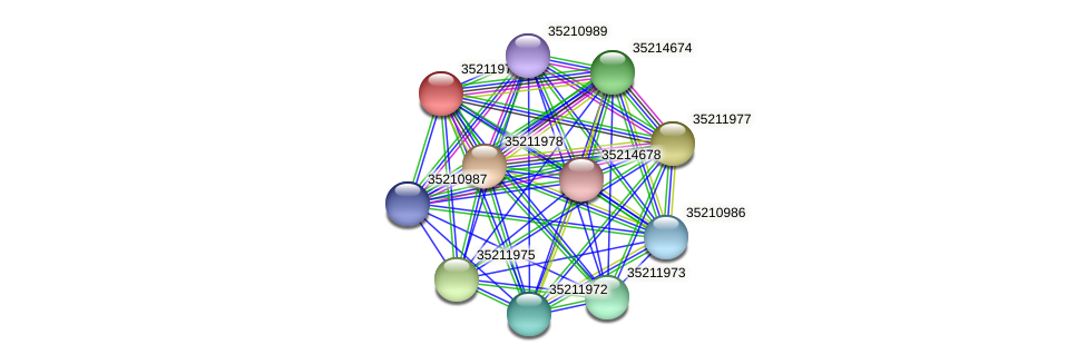 gll1411 protein (Gloeobacter violaceus) - STRING interaction network