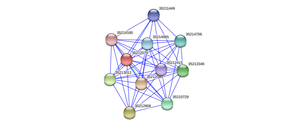 gll1514 protein (Gloeobacter violaceus) - STRING interaction network